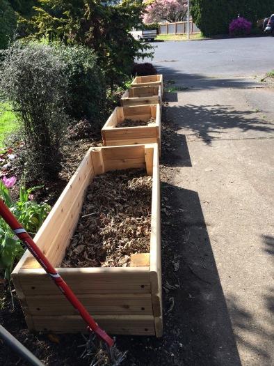 Empty planter boxes