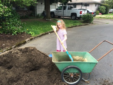 Using the wheelbarrow, like mom.