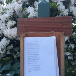 Rhodedendrons and a poem