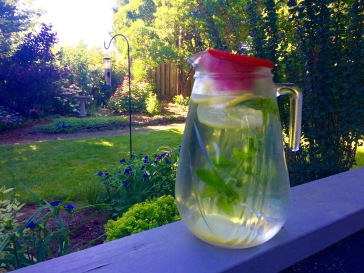 Refreshing lemon-mint water