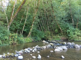 A creek runs into the Clackamas