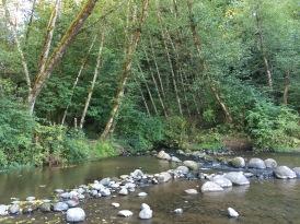 A creek runs into the Clackamas