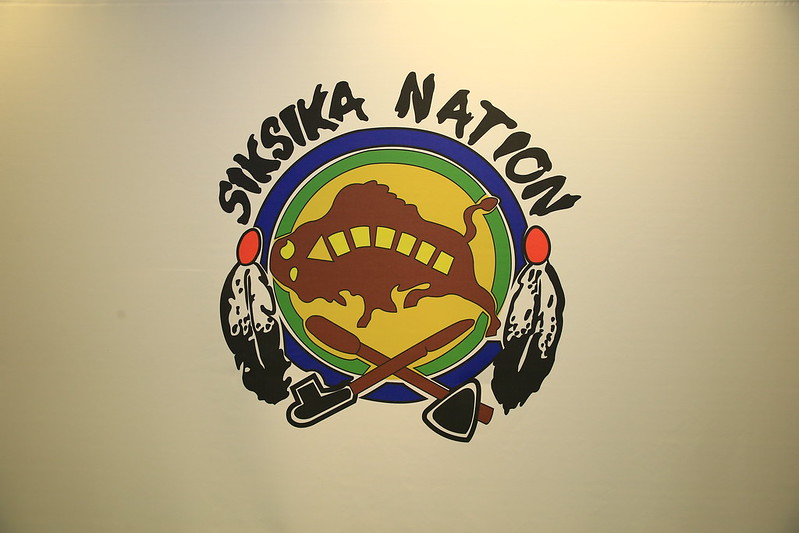 Image of the Siksicka Nation crest, with a stylized buffalo in the center of a circle, two feathers on the left and right side of the circle, and a pipe and hatchet at the bottom of the circle, crossed.
