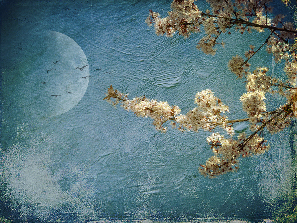 A moon in a blue background, with flowering branches in the foreground